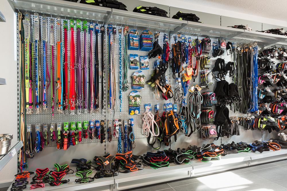 Hundeleine-Hundehalsband-Hundegeschirr-Welpenzubehoer-petcenter.ch-Shop-Niederbipp