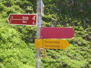 Wegweiser 1 auf der Torrentalp Wanderung mit Hund, petcenter.ch Blog