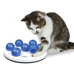 Katze mit Intelligenzspiel